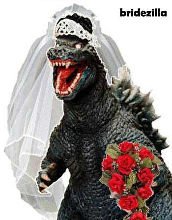 Myth of the Bridezilla